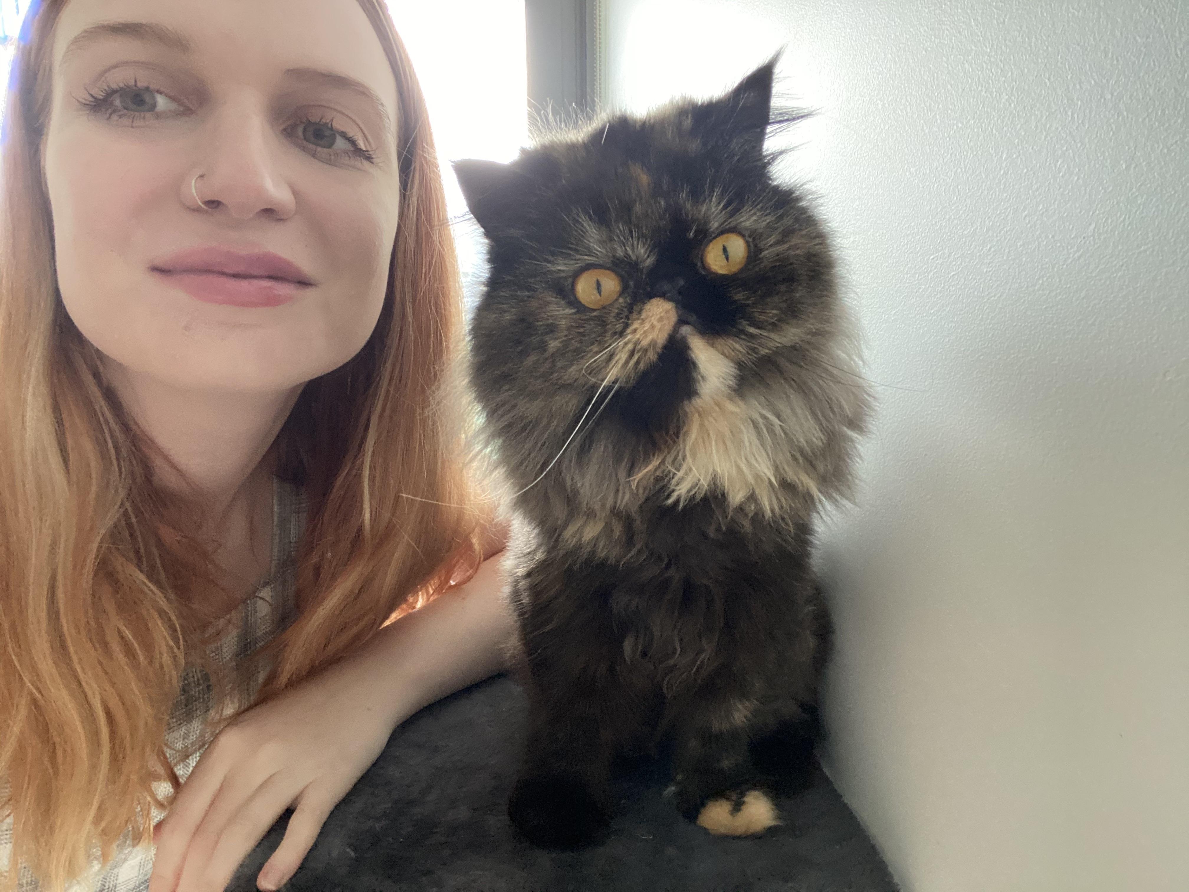 Madolline Gourley dan kucing persia pesek