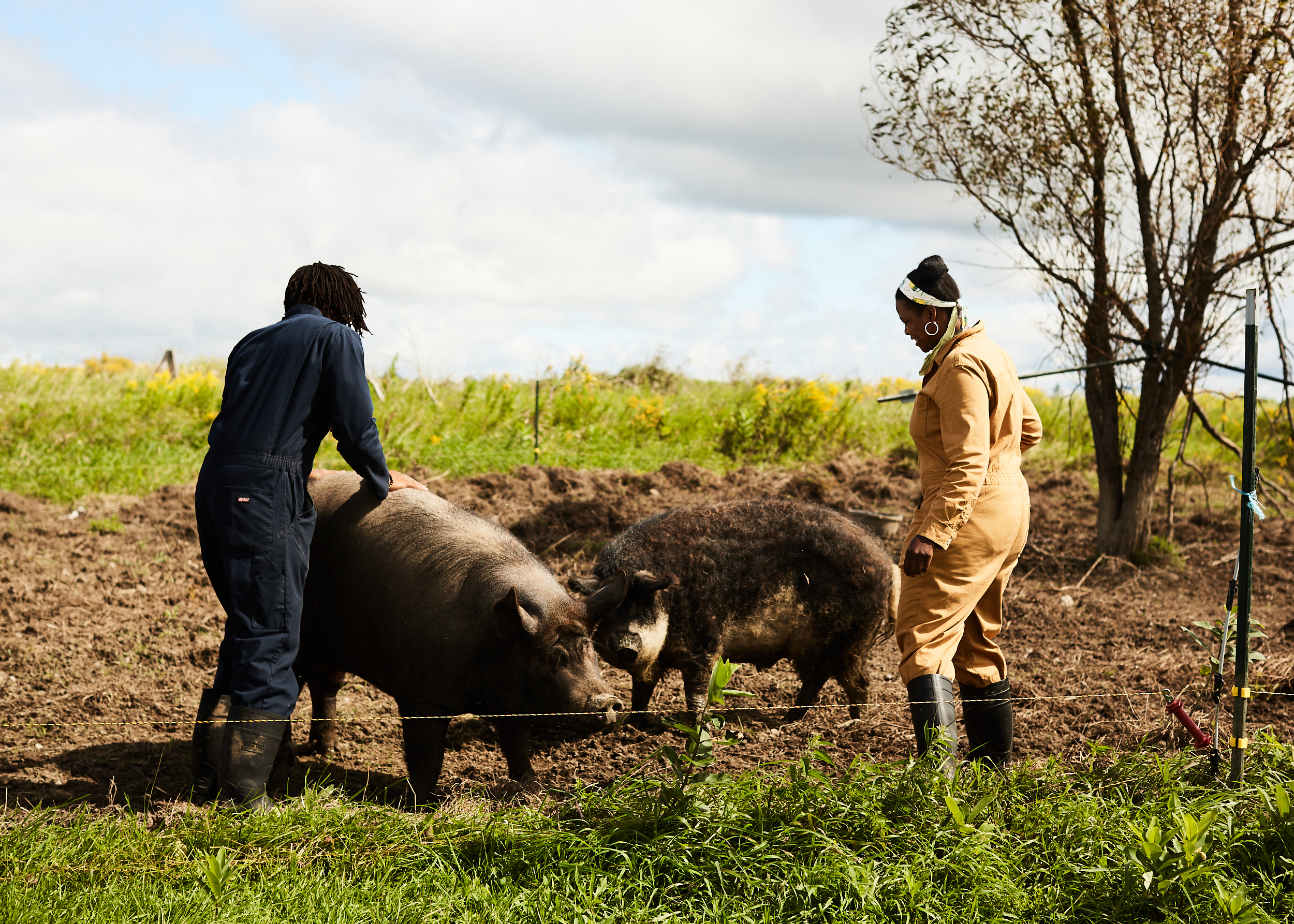 Williams and Rivera inspect the yard of Black Yard Farm Cooperative's two pigs, Pedro and Penelope.