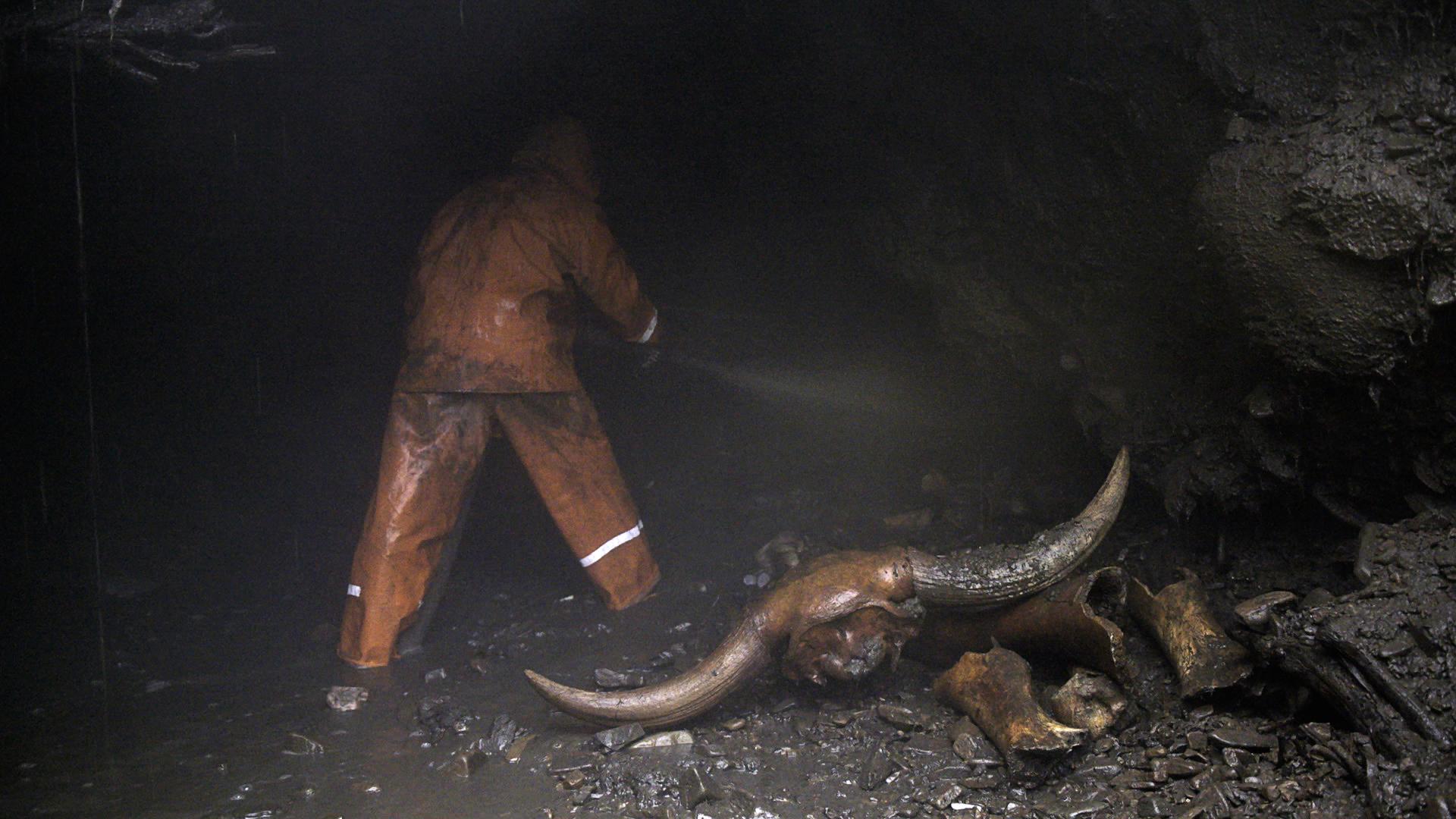Pemburu menggali terowongan. Di sebelahnya ada kepala bison purba.