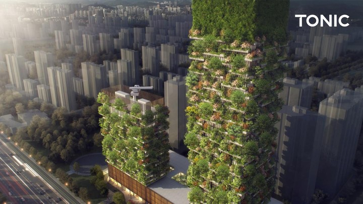 China Tries 'Vertical Forests' for its Air Pollution Problem