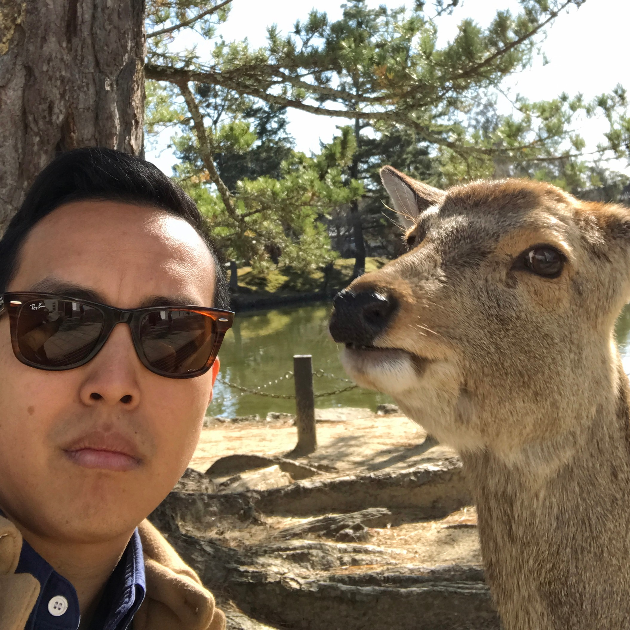 Alan Yang of Master of None Takes the East Coast vs West