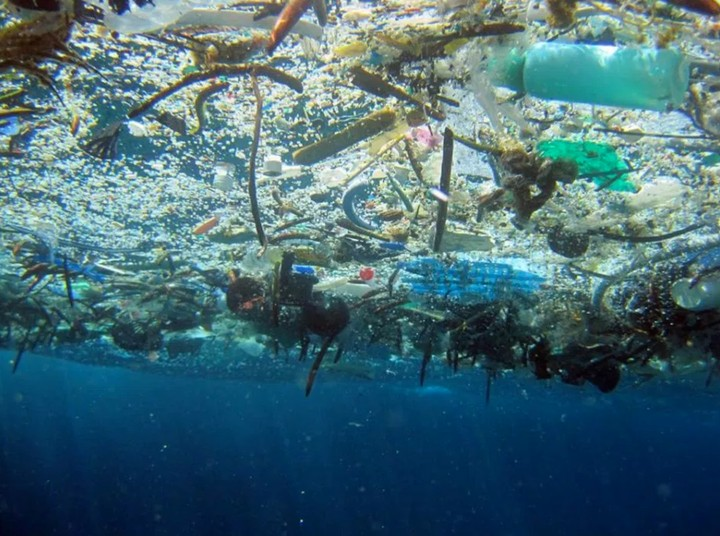 These Plastic-Eating Machines Will Filter Our Junk From the Ocean