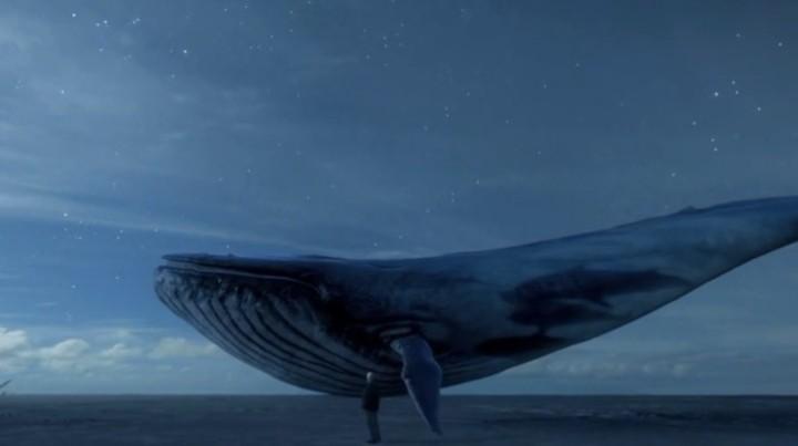 """Che cosa sappiamo di 'Blue Whale', il gioco degli """"adolescenti suicidi"""""""