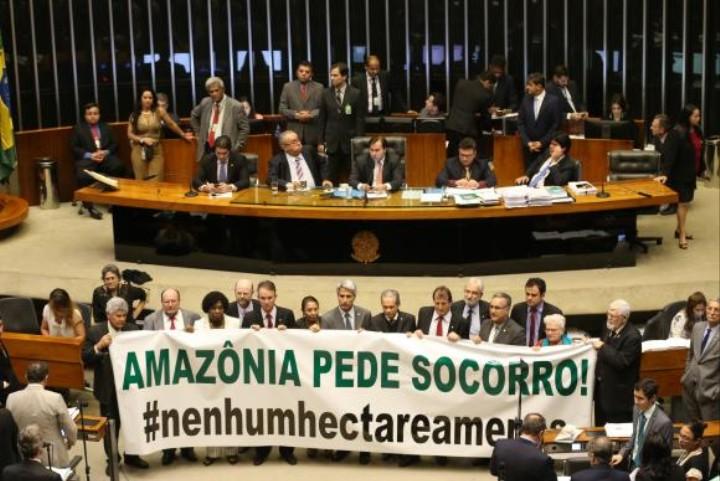 Câmara libera exploração de 486 mil hectares na Amazônia