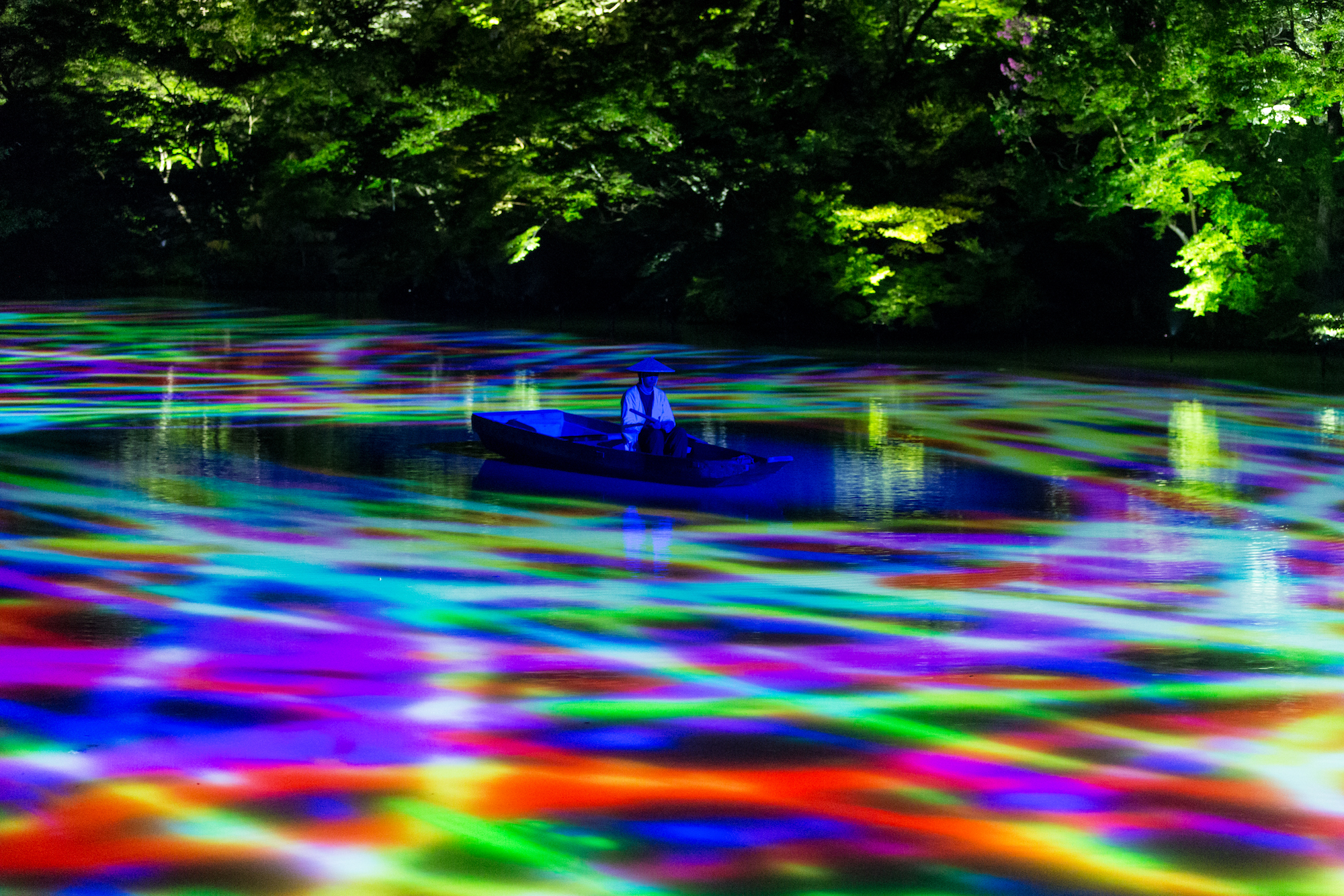50000 Lights Turn A Giant Japanese Forest Into A Glowing Wonderland
