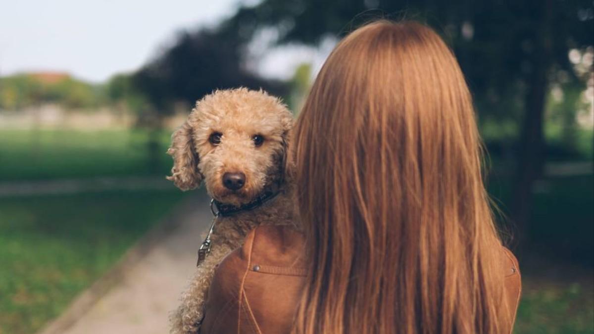 Zwierzęce żądze: o kobietach i zoofilii - VICE