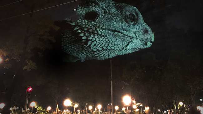 Projection Mapping - VICE