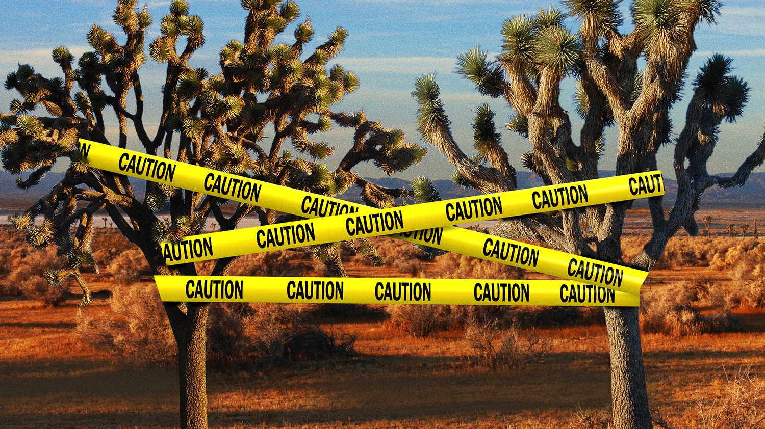 Murder in the Mojave: Homicides and Body Dumps in the California Desert - VICE