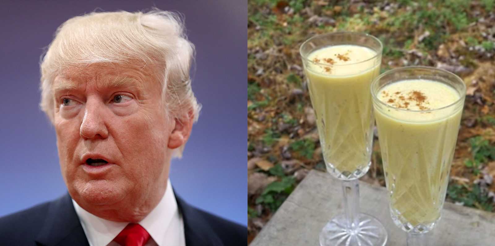 Donald's Main Problem: He's a Fool - LA Progressive |The Fool Trump