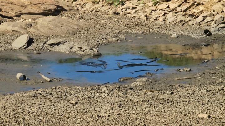 Perché l'emergenza siccità in Italia è più grave che mai