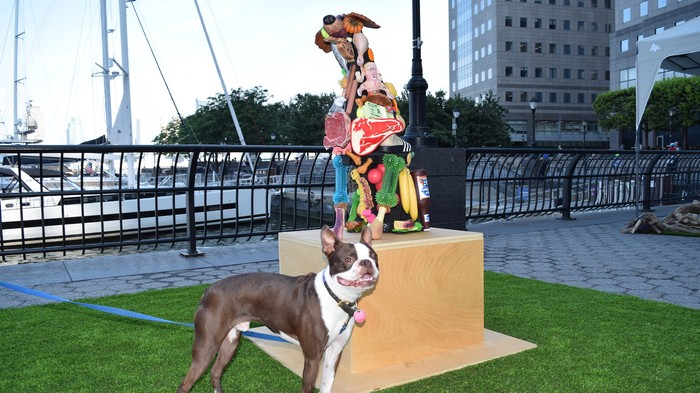 Doggone Cute Pics From America's First Art Show for Dogs