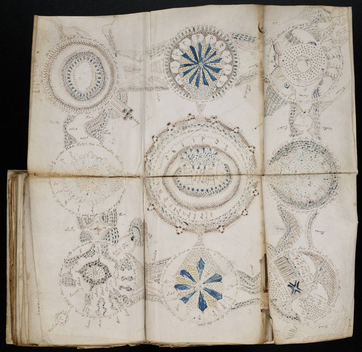 Uno studioso avrebbe trovato 'la soluzione' del manoscritto di Voynich