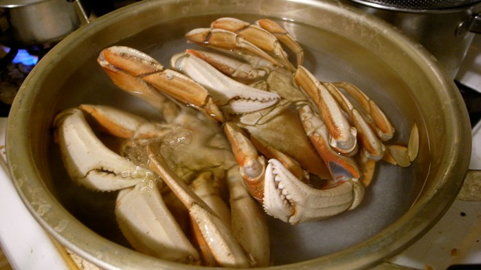 Watch This Horrifying Video of a Crab Eating Herbs While Being Cooked Alive