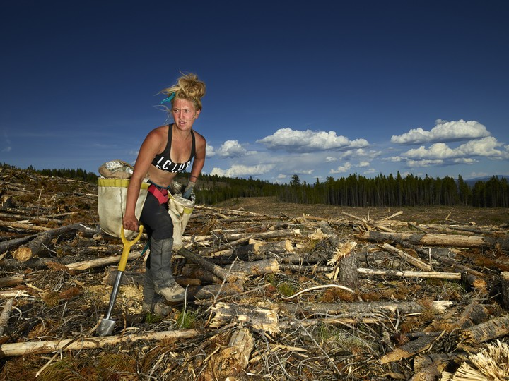 An Acclaimed War Photographer Turns Her Lens on Canada's Tree Planters