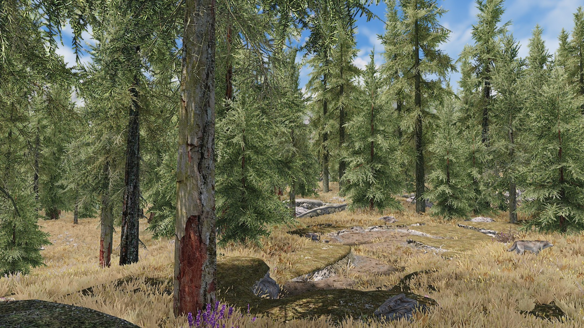Skyrim' Looks Better With Real Trees - VICE