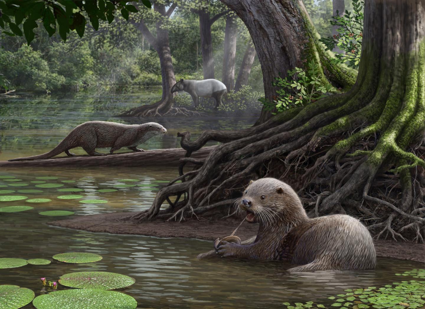 This Extinct Wolf-Sized Otter Demolished Prey With Its Forceful Bite
