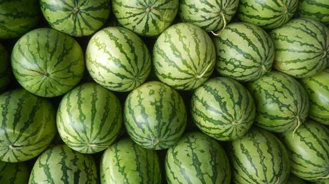 Walmart Will Pay Out 75 Million To Man In Watermelon Accident