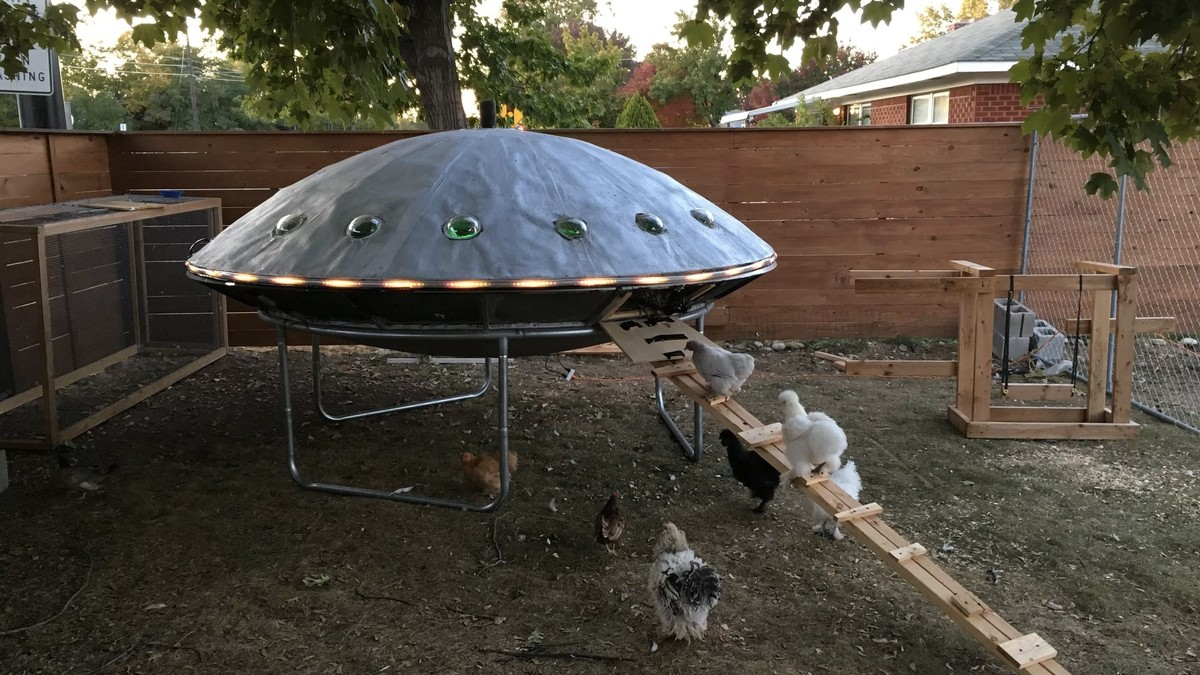 Alien-Obsessed Idaho Couple Builds UFO-Shaped Chicken Coop ...