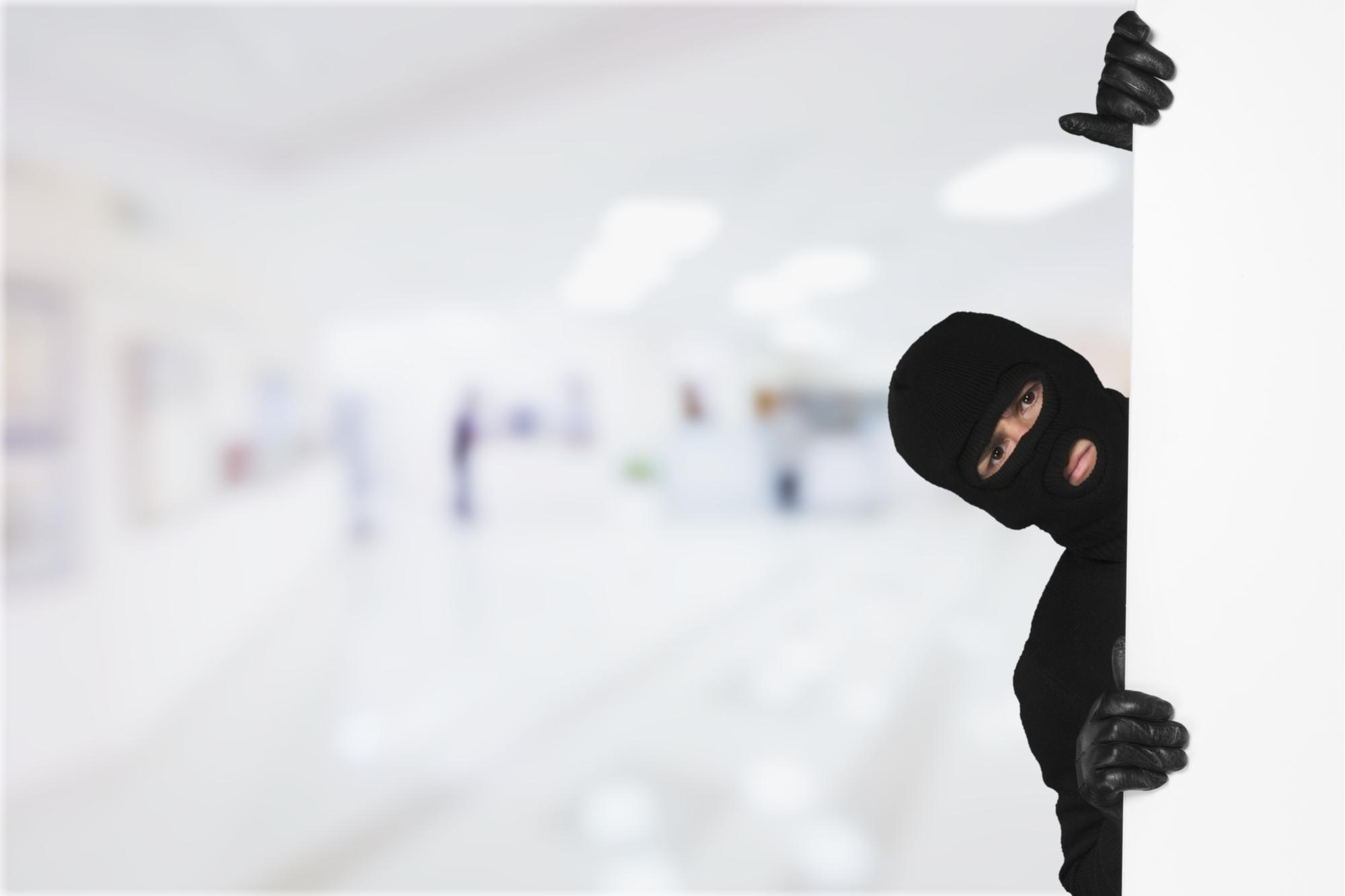 An Alleged Hacker Stole $30