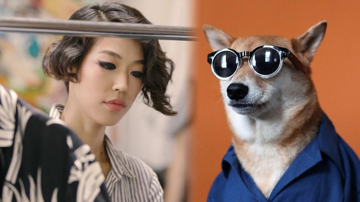 Dieser Hund ist das bestangezogene Männermodel auf Instagram