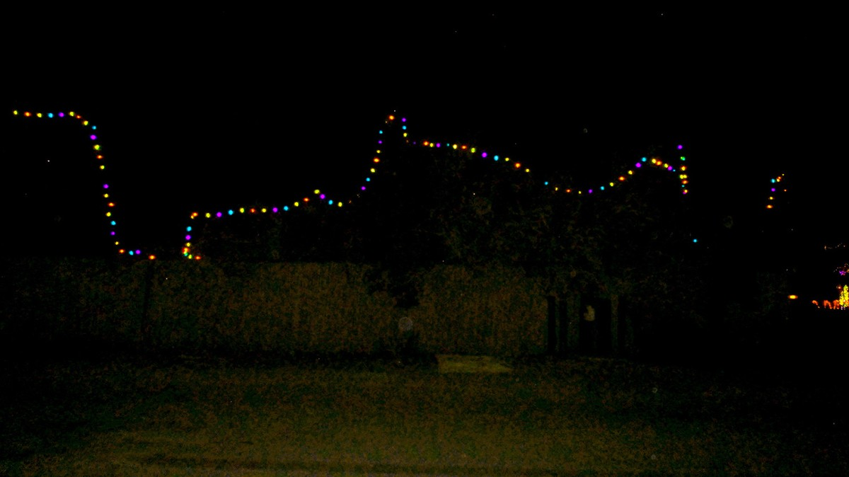 nine years ago i noticed that bob dylan who has a residence in my neighborhood of malibu california had begun to decorate the hedge outside his vast
