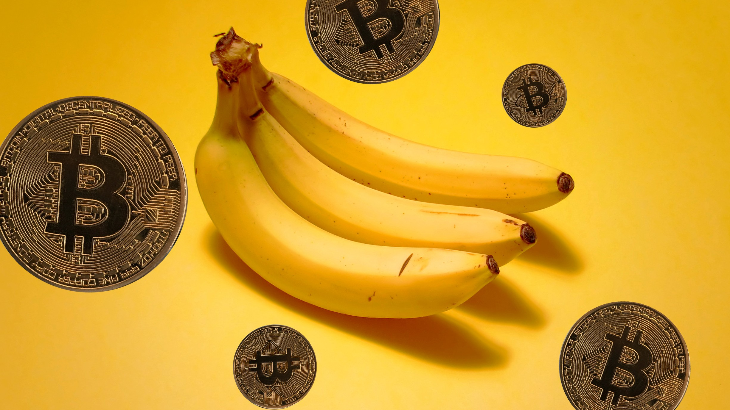 Developers Say That In Addition To Being A Good Investment Banana Prices Are Also Easy Enough For Our Parents Understand OK