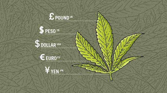 This Is How Much Weed Costs In 120 Cities Across The World Vice