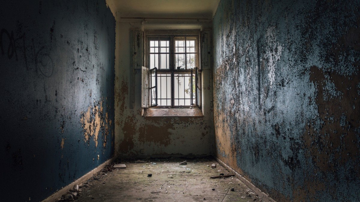 Life Inside Victoria S 19th Century Lunatic Asylums Vice