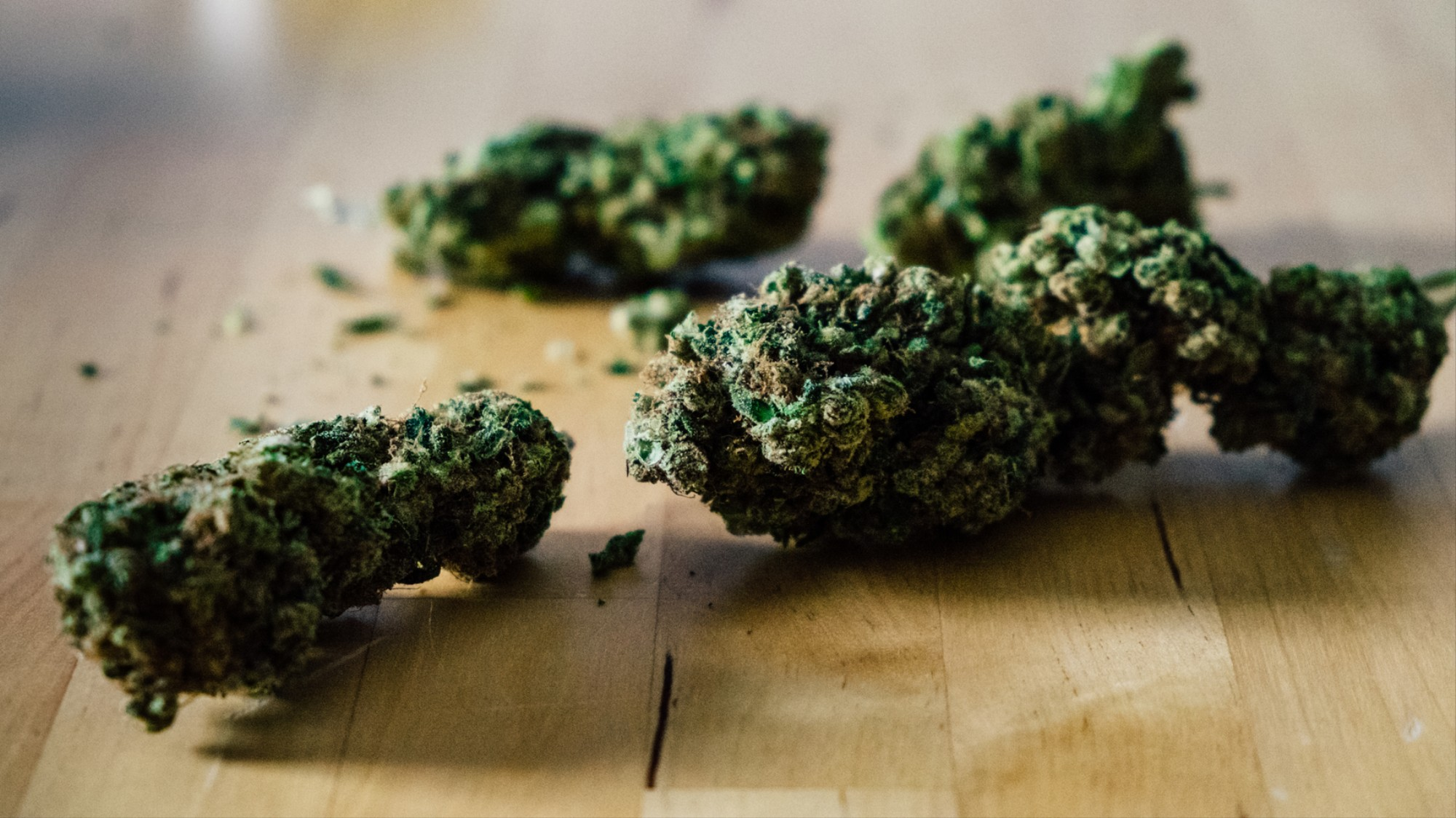 How Long Can Weed Show Up in a Drug Test? - VICE