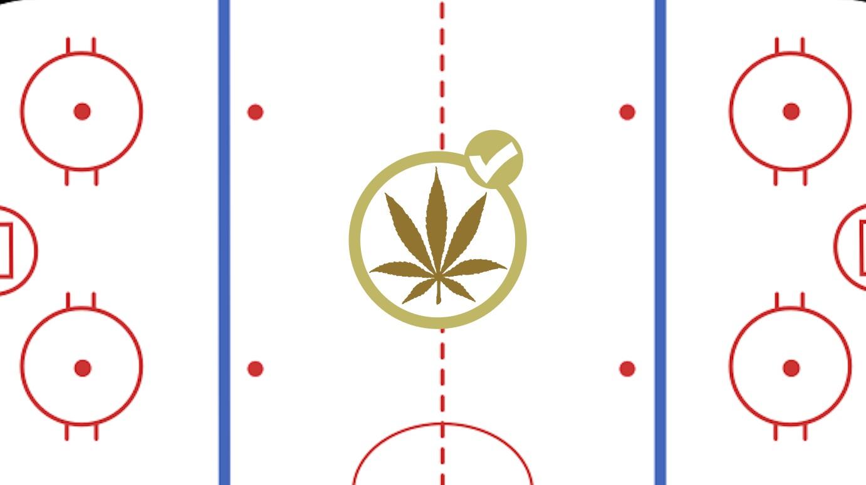 1521757226783-icehockeylayoutsvg.png?crop=0.7938xw:0.958xh;0.0988xw,0