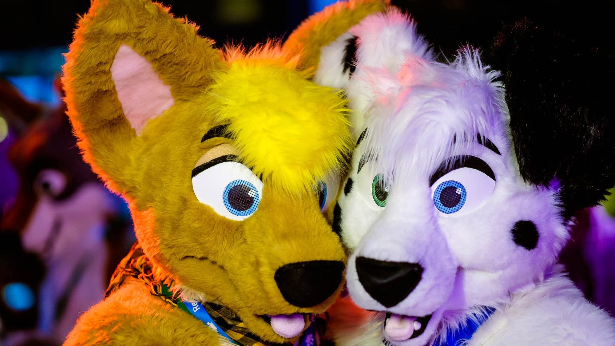 Furry Dating Site Shuts Down Because of FOSTA - VICE