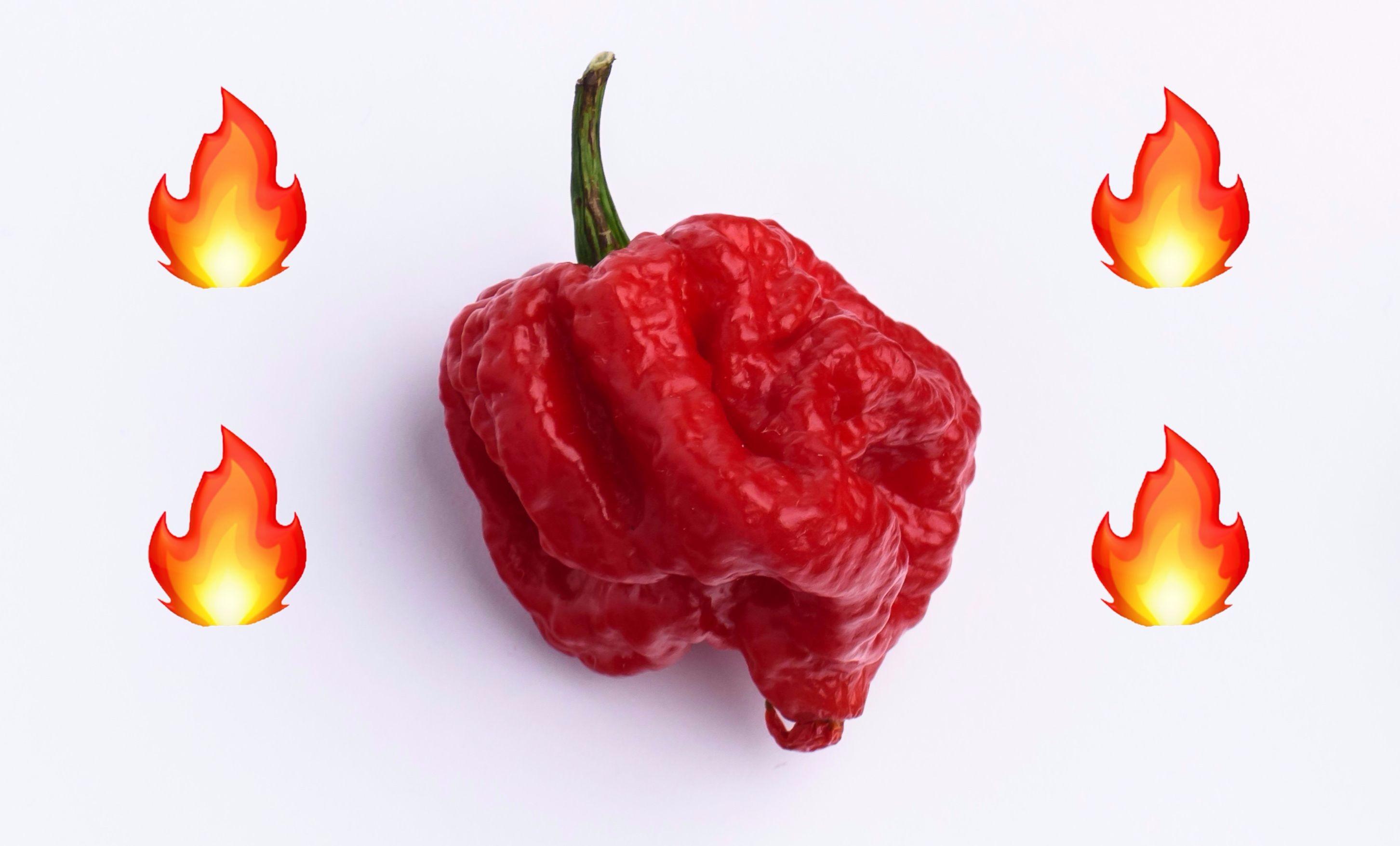 Cayenne pepper for sex enhancement