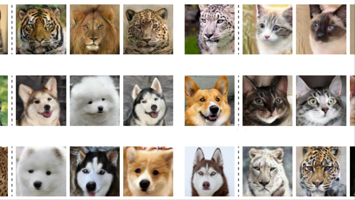 This AI Will Turn Your Dog Into a Cat