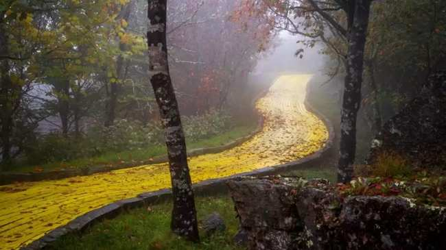 The Land Of Oz Has Sat Decaying Since 1980 Nestled At Top A Mountain In North Carolina