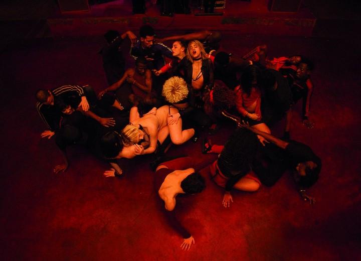 'Alcohol Makes You Stupid': Gaspar Noé Sums Up His New Film 'Climax'