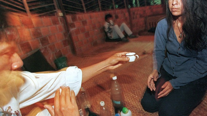 People Are Drinking Ayahuasca to Treat Physical Illnesses