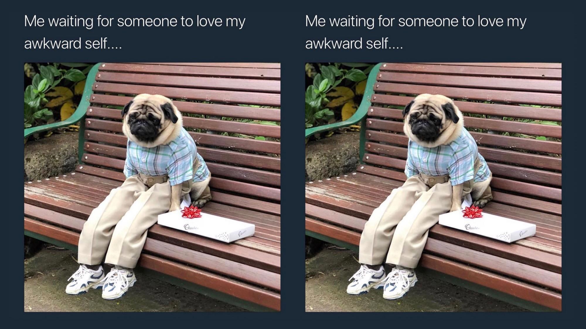 Dating sosiaalisen verkostoitumisen sivustot