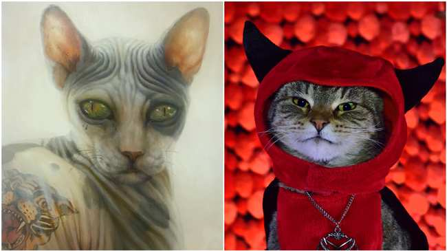 07799235270d Αυτή η Mπιενάλε με Γάτες Είναι η Απόλυτη Ευτυχία