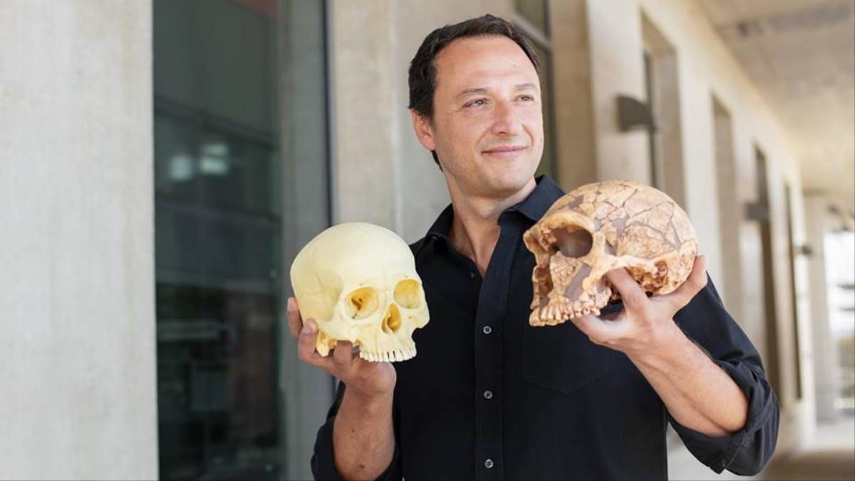 4bd296104 Este pesquisador brasileiro cria mini-cérebros de Neandertais em  laboratório - VICE