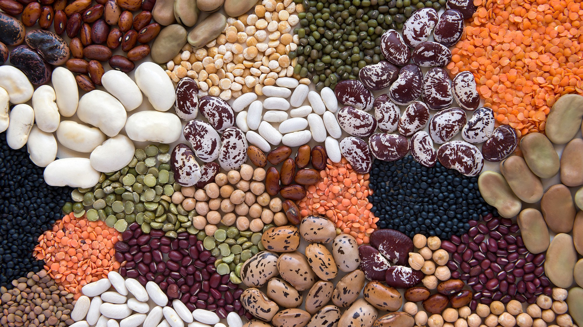 What Are Lectins and Are They Bad for Me? - VICE