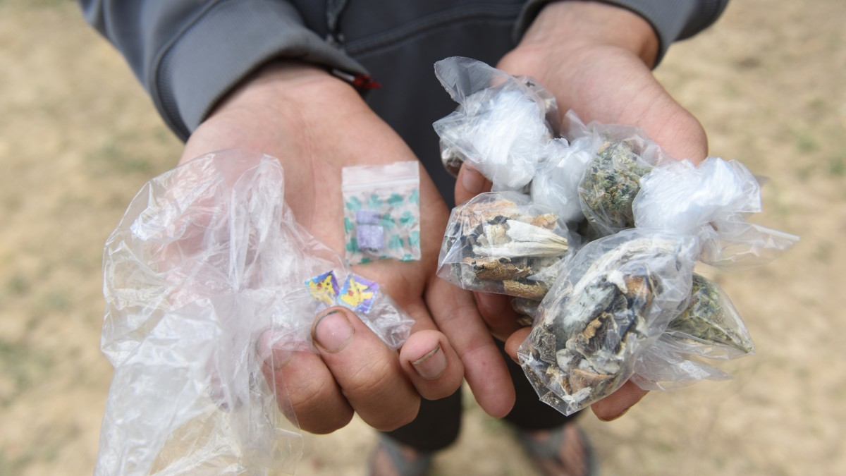 post-image-We Embedded with Vigilante Drug Testers at the Gathering of the Juggalos