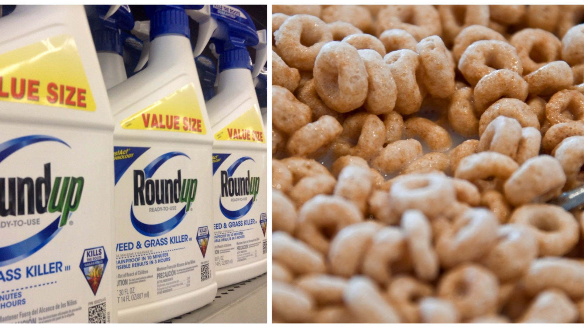 Well, This Sucks: Monsanto's Weed Killer Found in Cheerios