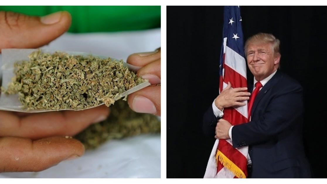 post-image-Trump's Secret Anti-Weed Committee