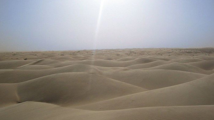 Wind and Solar Farms Could Make it Rain Regularly in the Sahara Desert