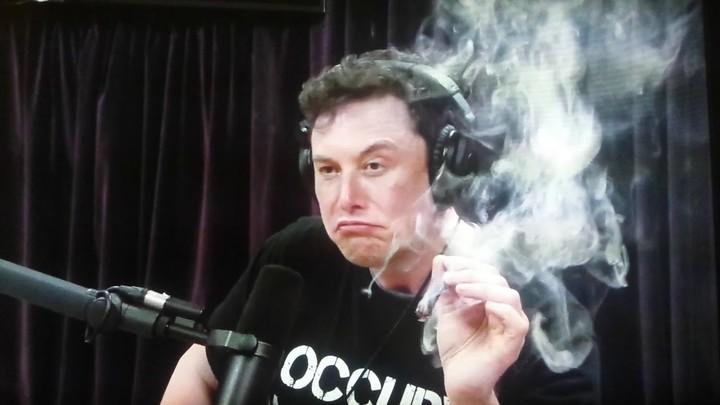 Guarda Elon Musk che si fuma una canna