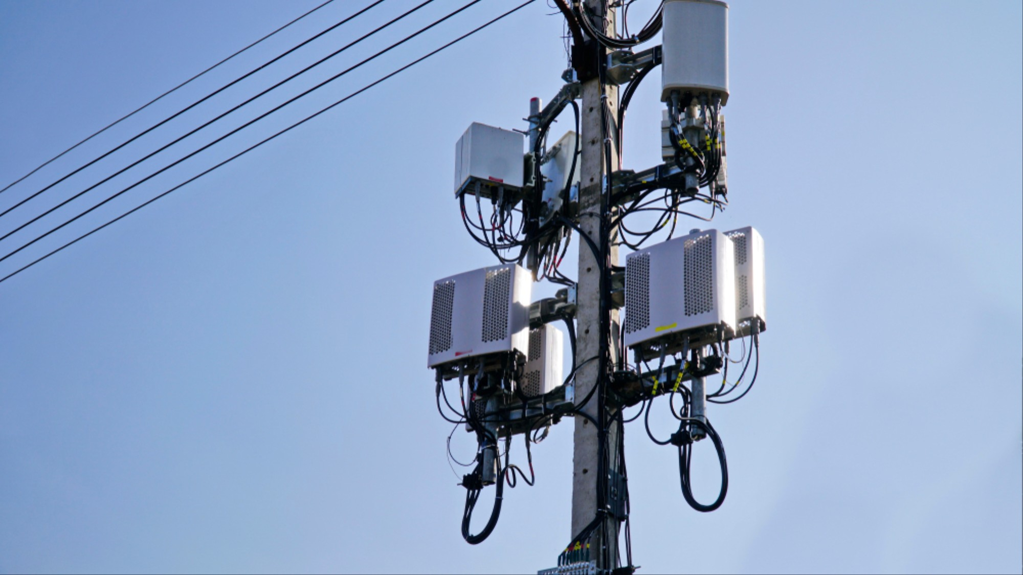 5G Wireless Rekindles Decades-Old Fight Over Cellular Health