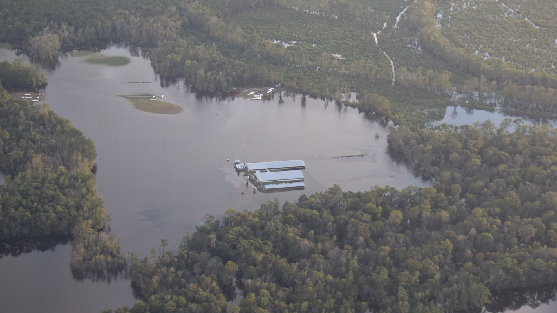 Hurricane Florence Is Turning North Carolina Into A Toxic Stew Of Pig Poop Sewage And Coal Ash