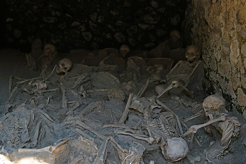 Researchers Show How Mount Vesuvius Eruption Vaporized Blood and Exploded Skulls