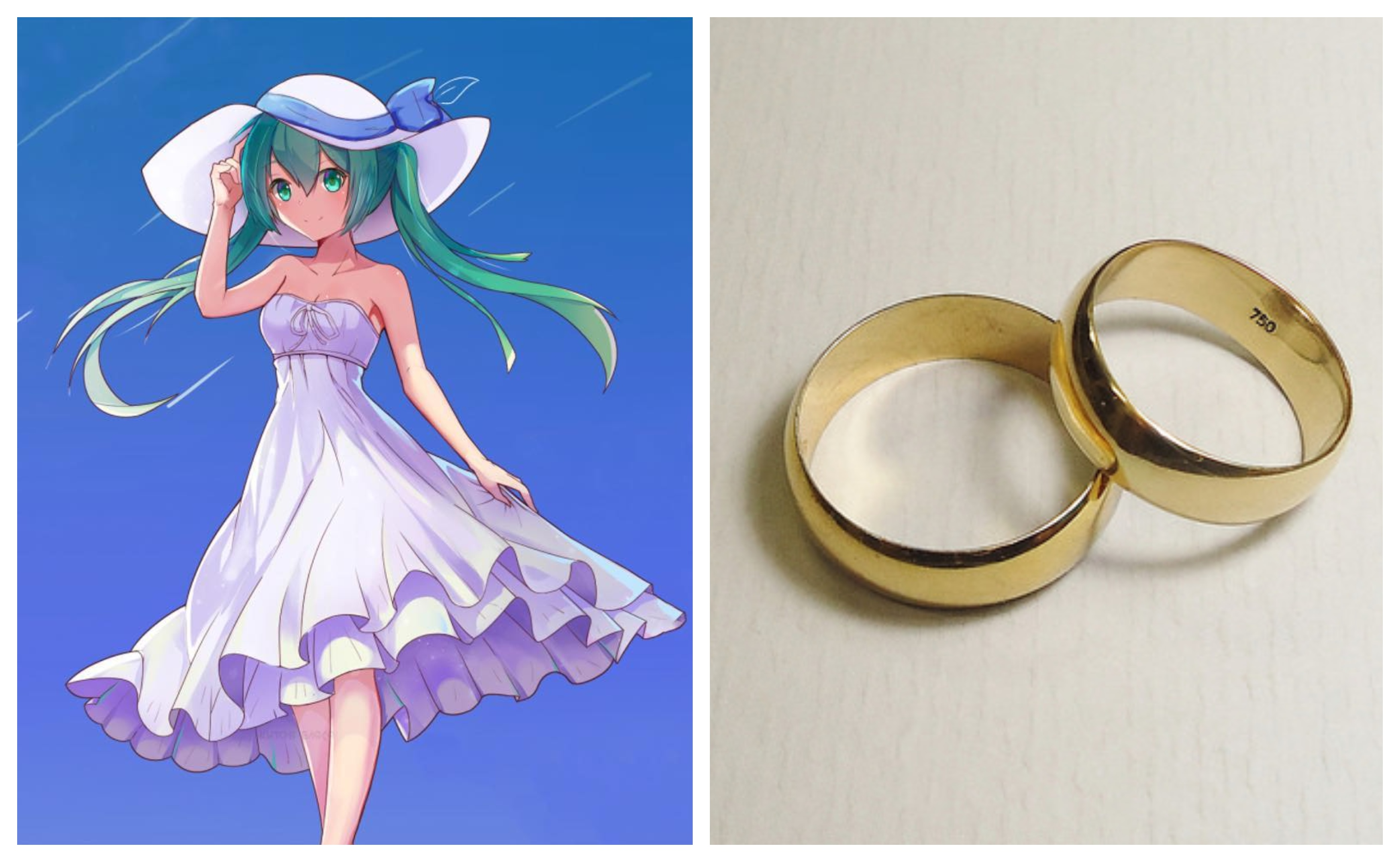 The story behind that guy who married an anime hologram in japan vice