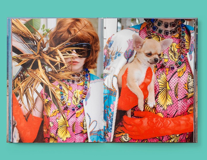 martin parr shoots the gucci cruise collection in cannes